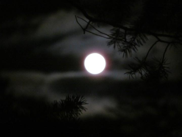 Light in the night 03
