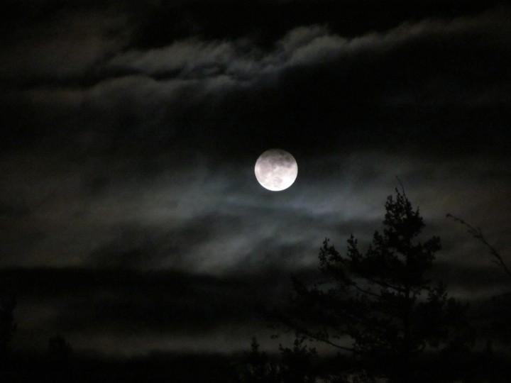 Light in the night 04